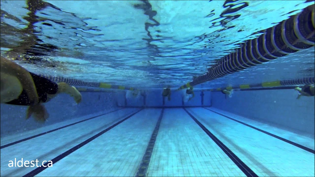 Olympic swimming pool montreal training pool youtube for Swimming images