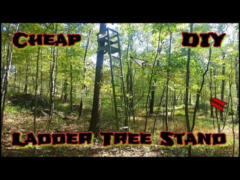 Cheap 🔨 DIY 🔨 Ladder Tree Stands... (2x4's)