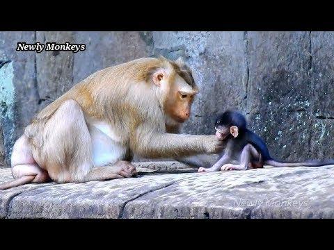Amazing time.. Ashley is sharing love to baby Daniela   Daniela warmly by Ashley take care