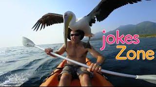 Самые смешные видео недели Август 2016 || Подборка смешных видео Best Jokes №6