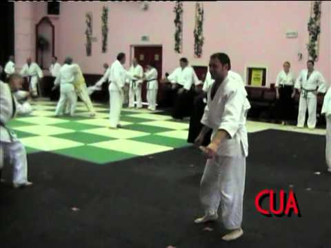 How to do Aikido in Wales - 2007