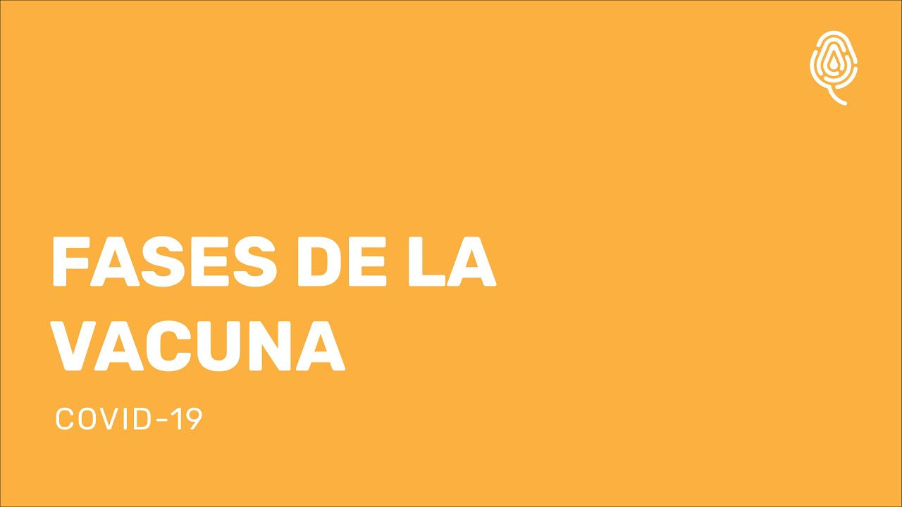 FASES DE LAS VACUNAS-COVID-19