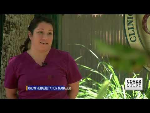 Diamondback terrapins hatch at C.R.O.W., face threats ahead