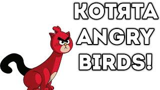 КОТЯТА ANGRY BIRDS!