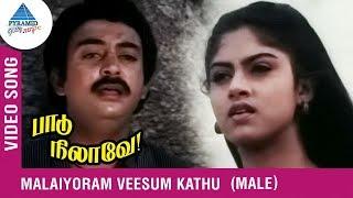 Paadu Nilave Tamil Movie Songs | Malaiyoram Veesum Kathu Video Song | Mohan | Nadhiya | Ilayaraja