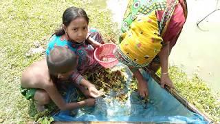 Women fishing in village । गांव में महिला मछली पकड़ना
