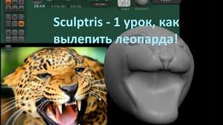 Sculptris лепить голову леопарда урок №1