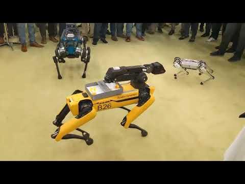 Seres robóticos