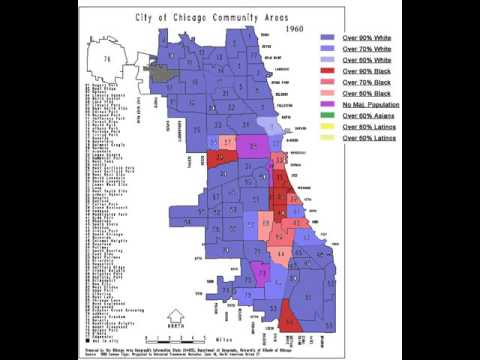 chicago demographics
