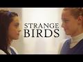 Strange Birds Betty Veronica mp3