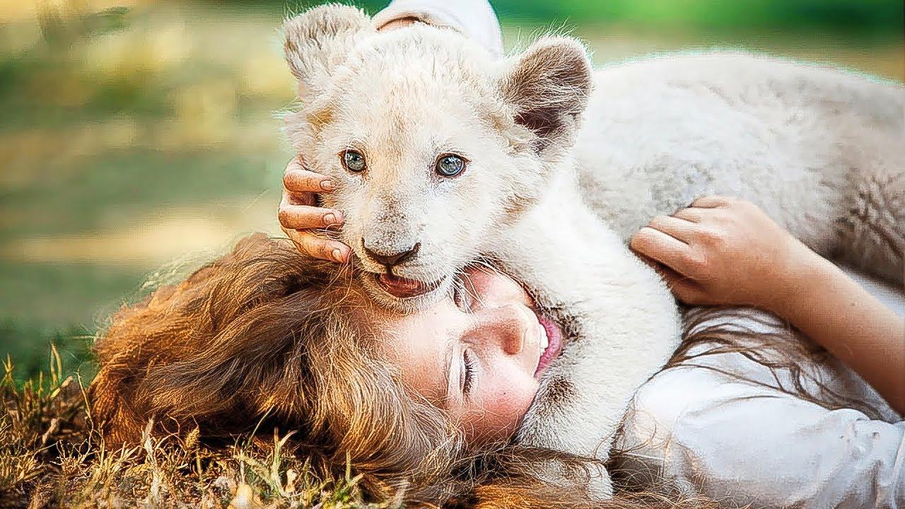 lion trailer deutsch