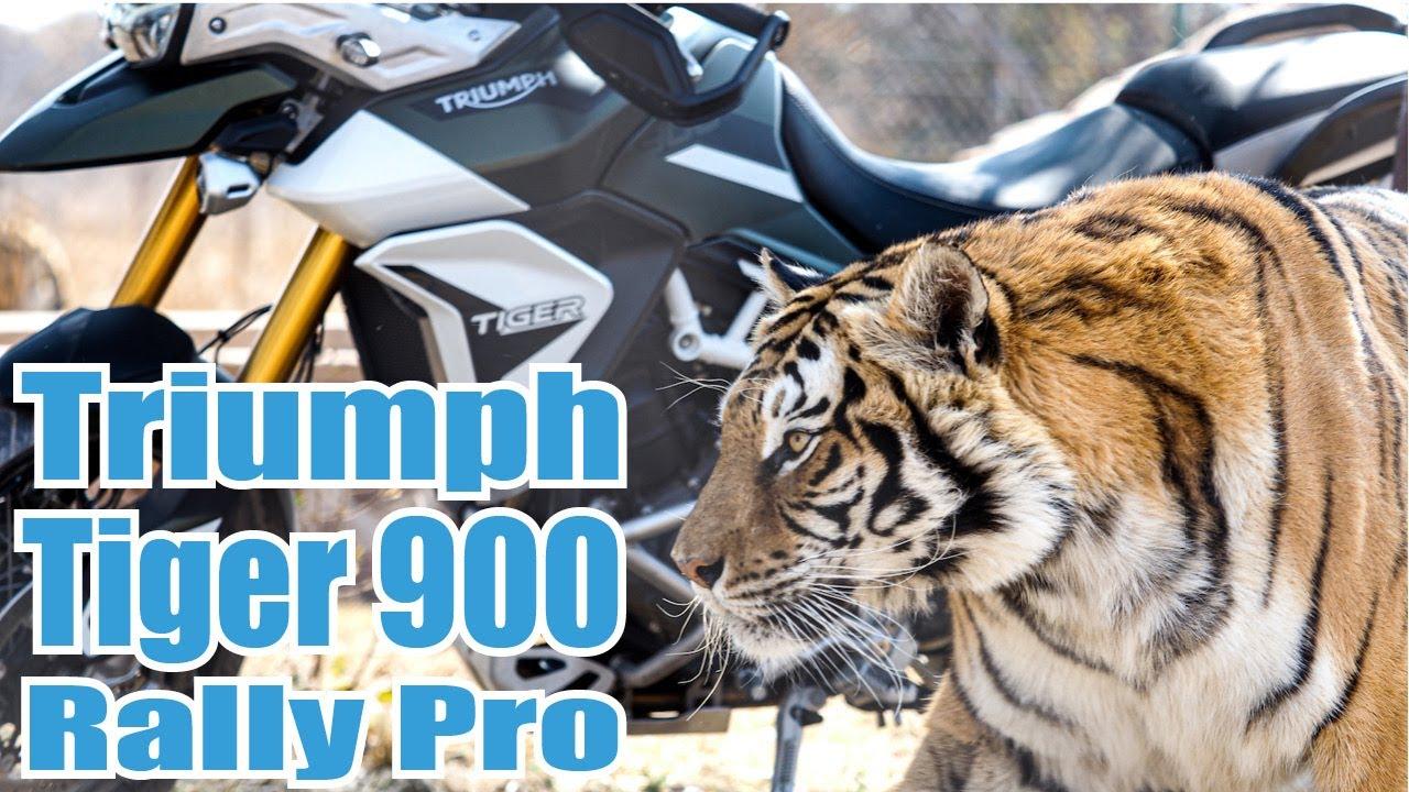Triumph Tiger 900 Rally Pro Review
