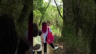 穴口恵子さん御一行様カタカムナの聖地の金鳥山へ!ジブリっぽいトンネル潜り!