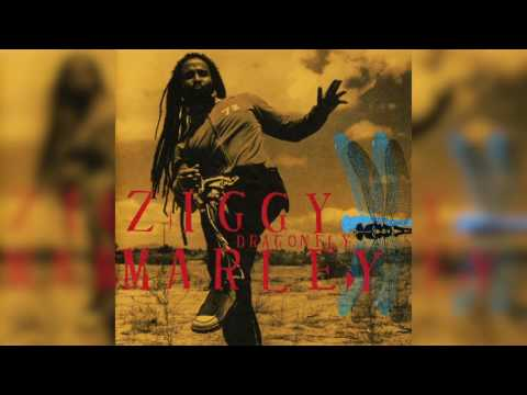 In The Name Of God - Ziggy Marley | DRAGONFLY