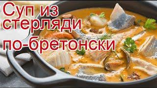 Рецепты из Стерляди - как приготовить Стерляди пошаговый рецепт - Суп из стерляди по-бретонски