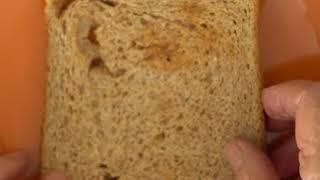 Lonchera de Naná: Sándwich de huevo y palta