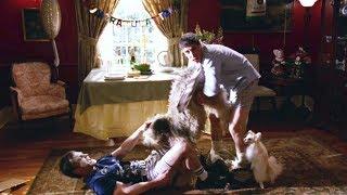 Стифлер приходит на вечеринку БЕЗ ПРИГЛАШЕНИЯ. Американский пирог 3: Свадьба. 2003