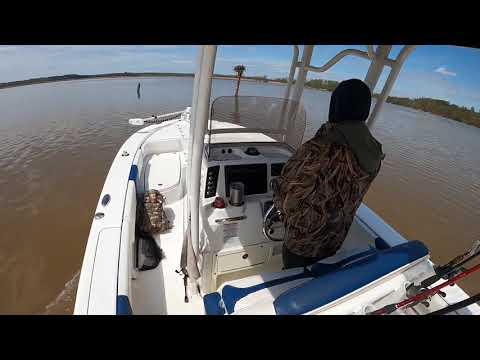 Northern Snakehead Fishing Gunpowder River Maryland