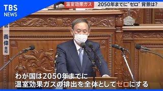 温室効果ガス「2050年までに実質ゼロ」【news23】