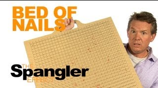 The Spangler Effect - Bed of Nails Season 01 Episode 27