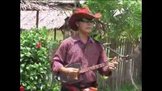 พิณซิ่งสุดมัน (( E-san dance Thailand folk music ))