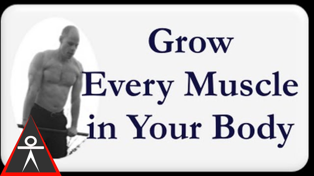 How To Grow Every Muscle In Your Body Youtube