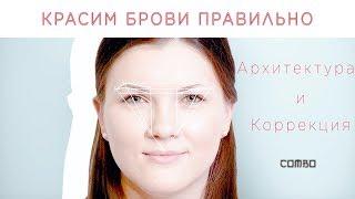 Архитектура, окрашивание и коррекция бровей. www.kosmkurs.ru.