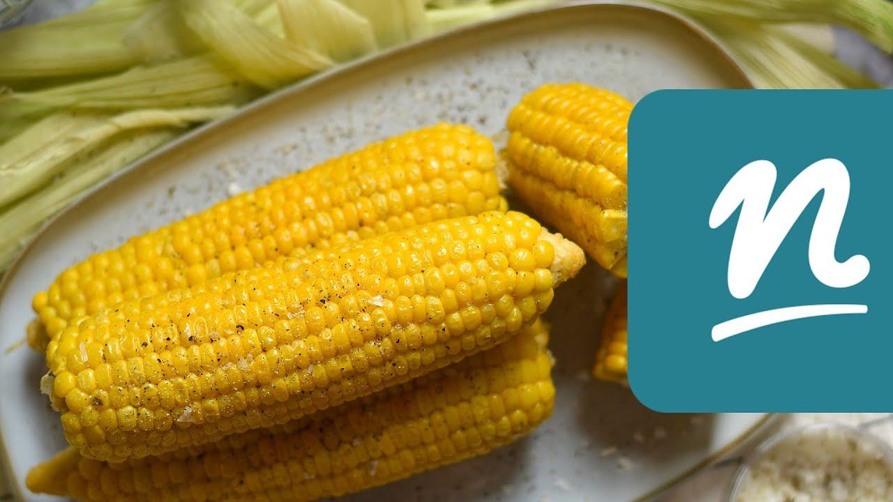 Kukorica fonálféreg, Fonalfereg kukorica