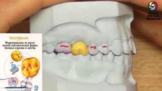 Книги для зубных техников