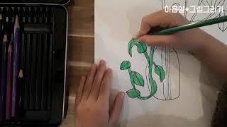 꼬마밥로스, 식물그림그리기
