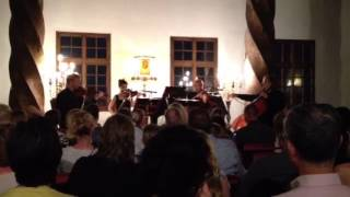 Chamber Orchestra concert in the Golden Hall, Salzburg, Aus