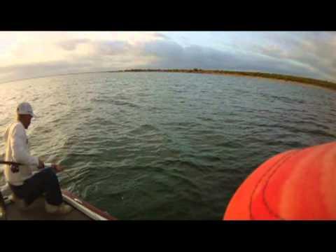Lake Amistad Bass Fishing W Guide The Amistad Man Jc