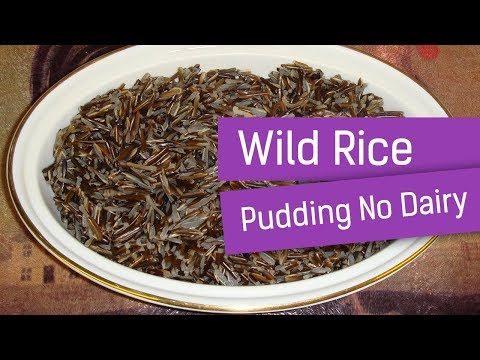 Wild Rice Pudding No Dairy