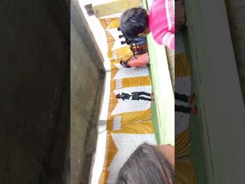 बापू बा.स.म.स्कूल विलायत कलाँ