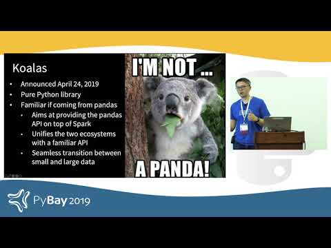 Image from Koalas: Easy Transition from pandas to Apache Spark
