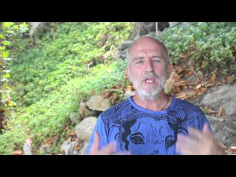 Quantum LIght Breath 2- More Aliveness and Vitality through Connected-Breath