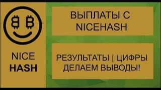 Выплаты NiceHash. Результат майнинга на NiceHash 😅