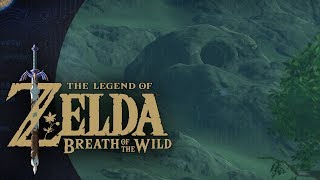 Breath of the Wild 1 year Anniversary
