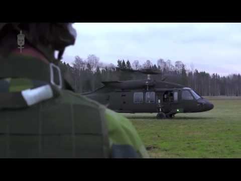 Flygvapnet - Swedish Air Force