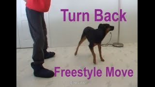 Canine Freestyle: How To Teach Turn & Backing Towards You Using Backchaining