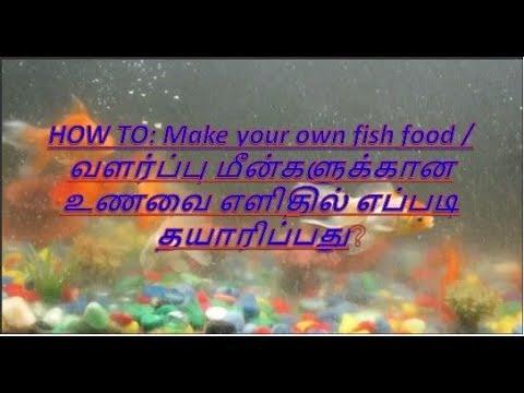How To Make Your Own Aquarium Fish Food (Tamil)
