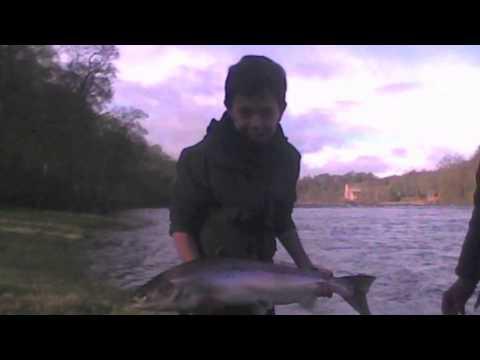 Salmon Fishing Scotland Fishing Memories Of A Good February Week On The Tay, Perthshire 2014.