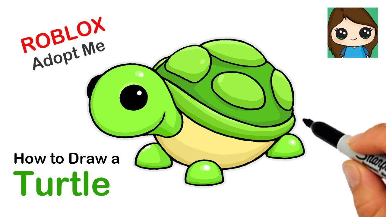 How To Draw A Turtle Roblox Adopt Me Pet Youtube