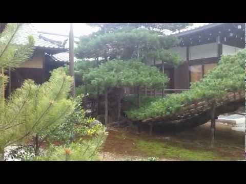 kyoto global
