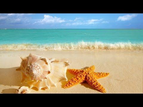 Música Relajante y Olas del Mar | Música de Relajación y Meditación | Música Relax para Meditar