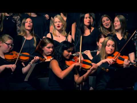 The cat empire - The wine song (orchestral cover) Marco de Jong ODM Utrecht