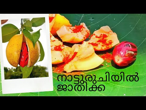 Taste Of Village  (നാട്ടുരുചി )Nutmeg With Salt And Chilly Powder