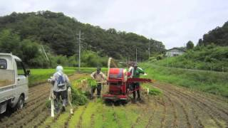 島根県美郷町の地域おこし協力隊がお送りする、IP告知端末を利用した地...