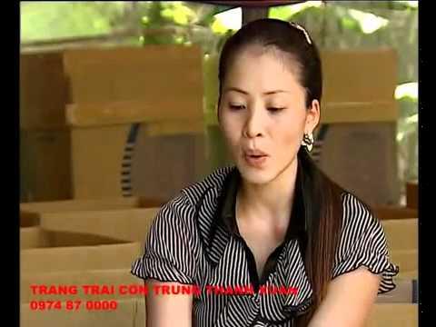 Kỹ thuật nuôi dế cơm          Kythuatnuoitrong.com