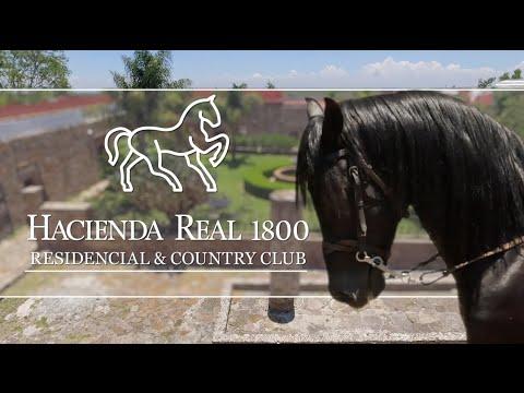 Hacienda Real 1800